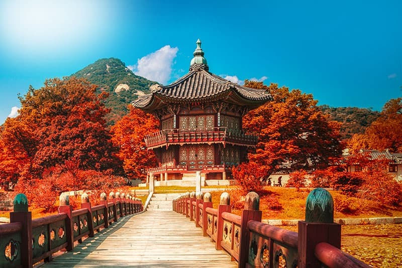 South Korea Luxury & Deluxe Tours